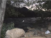 Original Digital Picture